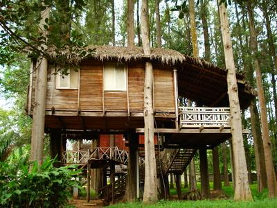 L'écotourisme est une forme de voyage responsable dans les espaces naturels qui contribue à la protection de l'environnement et au bien-être des populations locales